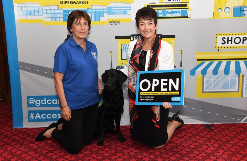 Jo Churchill MP guide dogs 2019